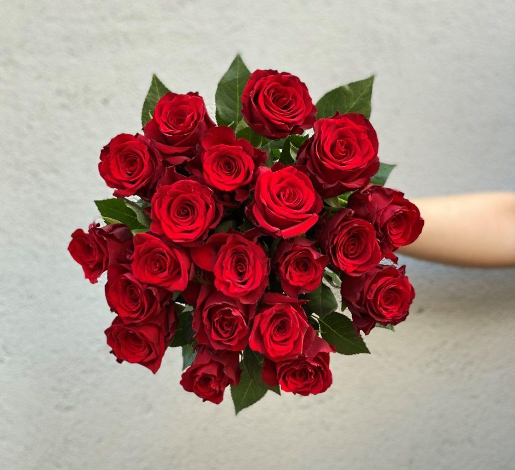 Rode roser2